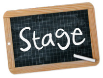 stage2016 copia
